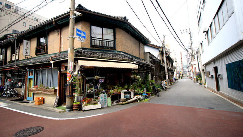 Japan So Far | 日本乱趴之旅